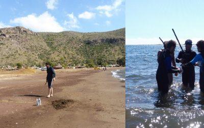 Muestreo de sedimento, agua y biota marina en las playas del Gorguel y Cabo de Palos (Murcia)