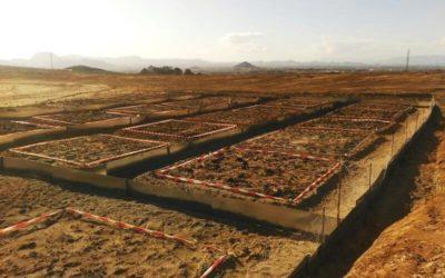 Construcción de las parcelas de fitoestabilización asistida en el Distrito minero de Cartagena-La Unión (GT4)