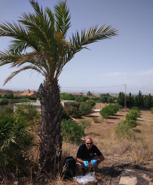 Réunion téchnique et échantillonnage des plantes Tidensia à Carthagène (Espagne)